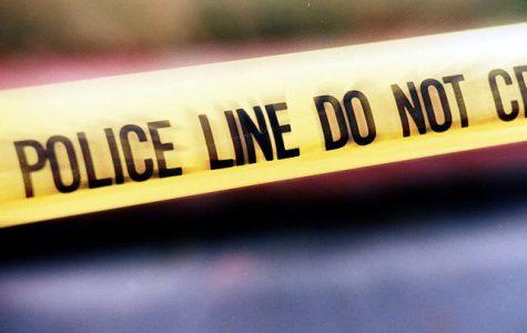 Police conduct investigation on Northwestern vandalism