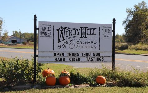 Get Into the Fall Spirit at Windy Hill