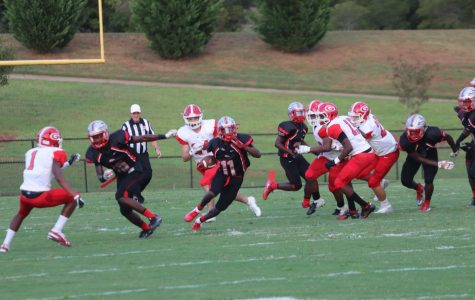 Photo Gallery: Stallions Face The Raiders