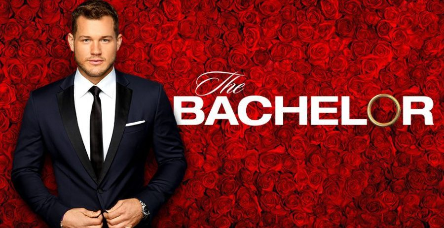 Review%3A+The+Bachelor+Season+23